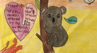 Burnaby students are doing their part in the global effort to help animals that have been injured or displaced by the devastating bushfires in Australia. Millions of acres of […]